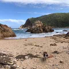 Coney Glen Beach Knysna