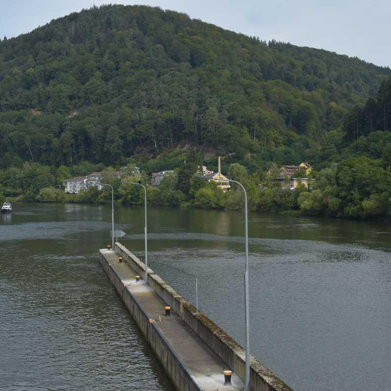 Camping Haide (Heidelberg)