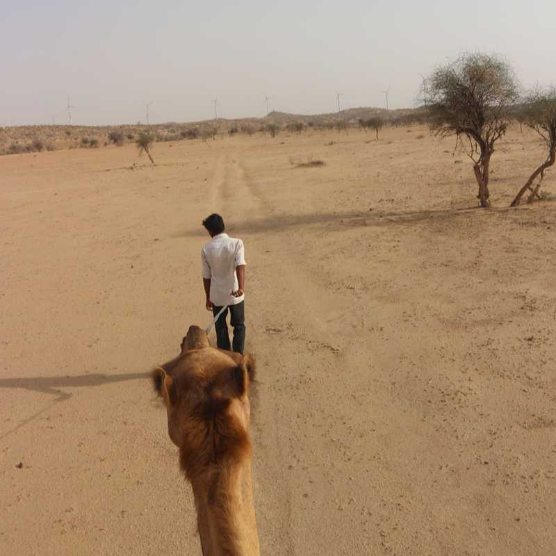 Exotic jeep safari