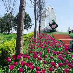 Pujiang Jiaoye Park / 浦江郊野公园