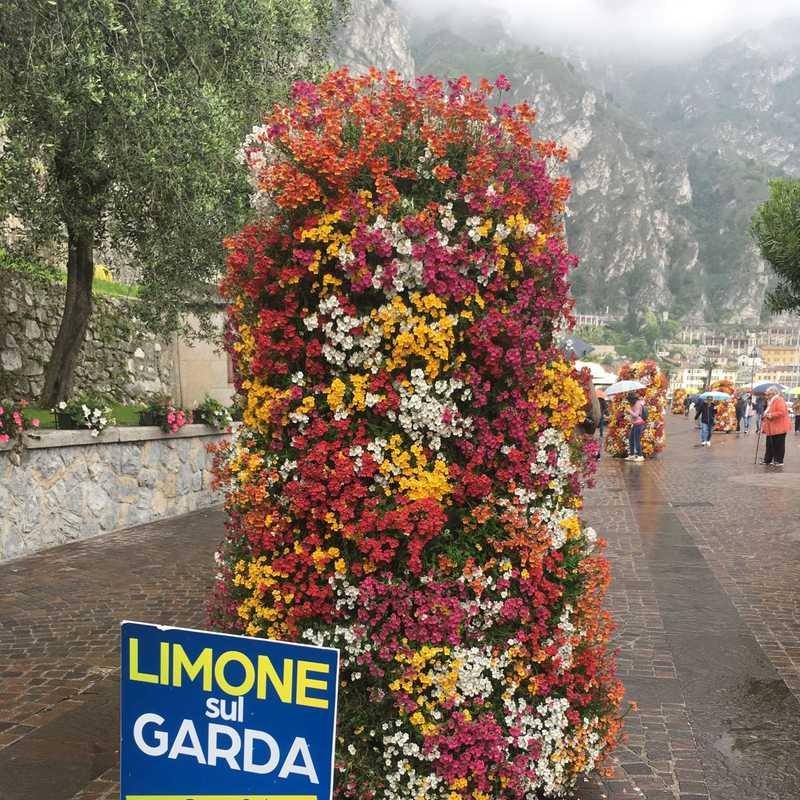 Limone Sur Garda (city view)