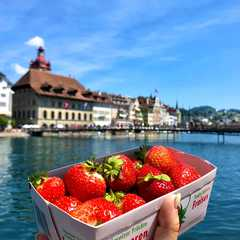 Lucerne - Selected Hoptale Photos