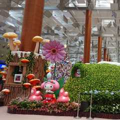 Changi Airport Singapore (SIN) | POPULAR Trips, Photos, Ratings & Practical Information