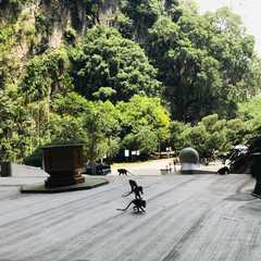Kek Lok Tong - Real Photos by Real Travelers