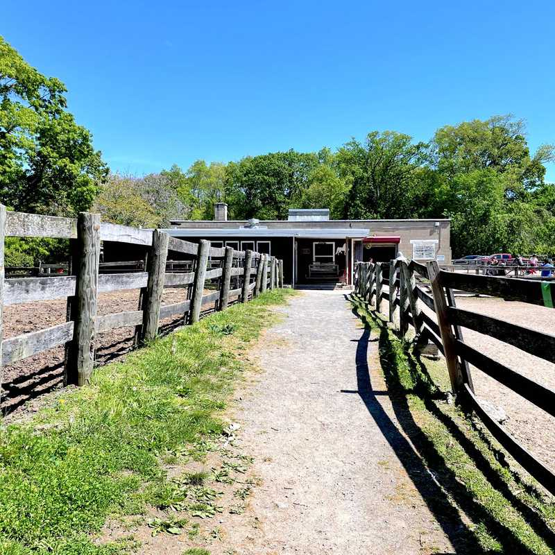 Bronx Equestrian Center