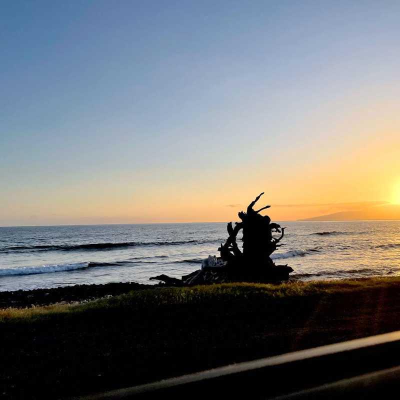 Napili Bay Beach Trail