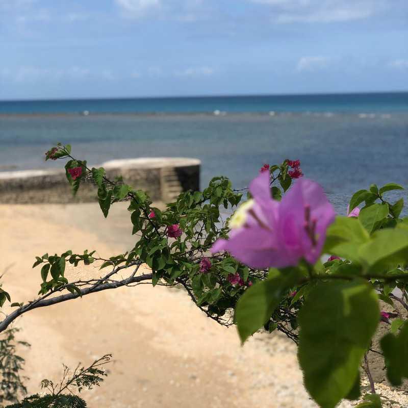 Trip Blog Post by @jeniza: San Remigio, Cebu | 2 days in Feb (itinerary, map & gallery)