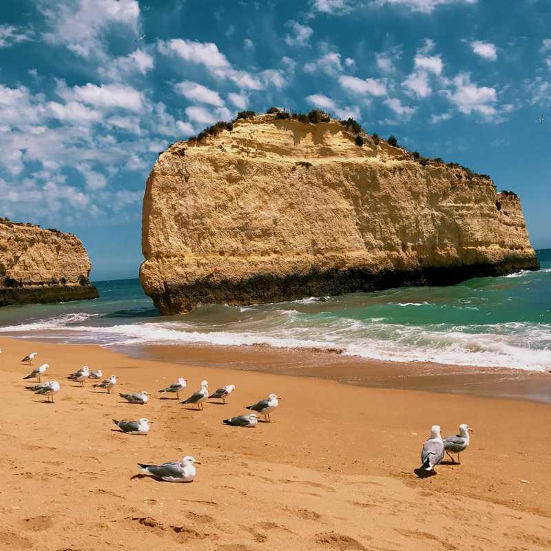 Visit Praia da Cova Redonda