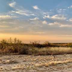 Texas - Selected Hoptale Trips