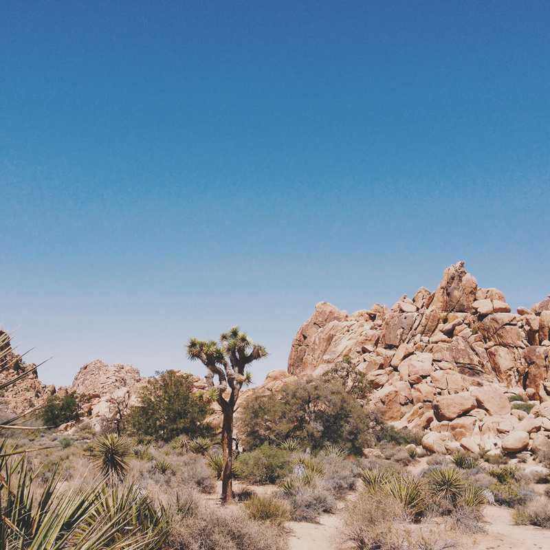 Trip Blog Post by @Jurego: California 2015 | 6 days in Apr (itinerary, map & gallery)