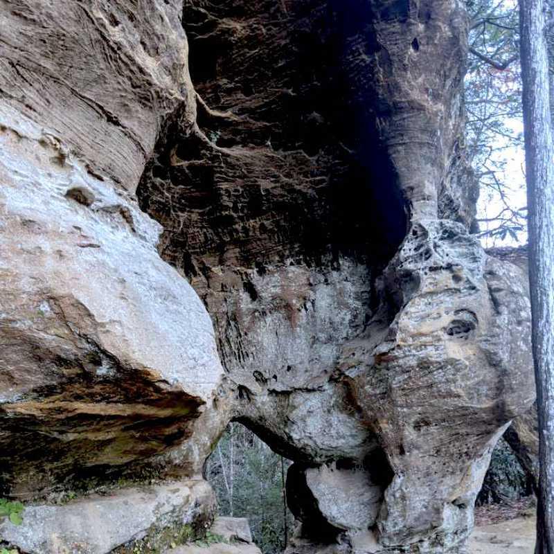 Angel Windows Trailhead - Red River Gorge