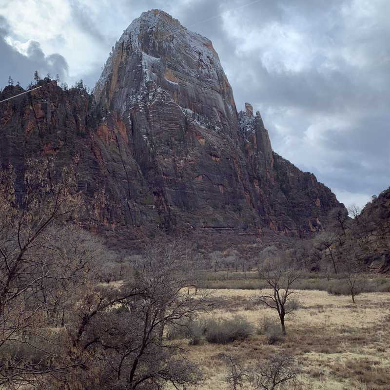 Big Bend Viewpoint