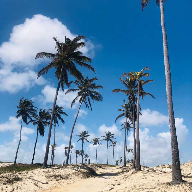 Praia de Lagoinha