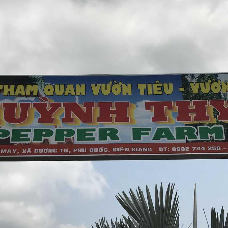 Vườn Tiêu Huỳnh Thy