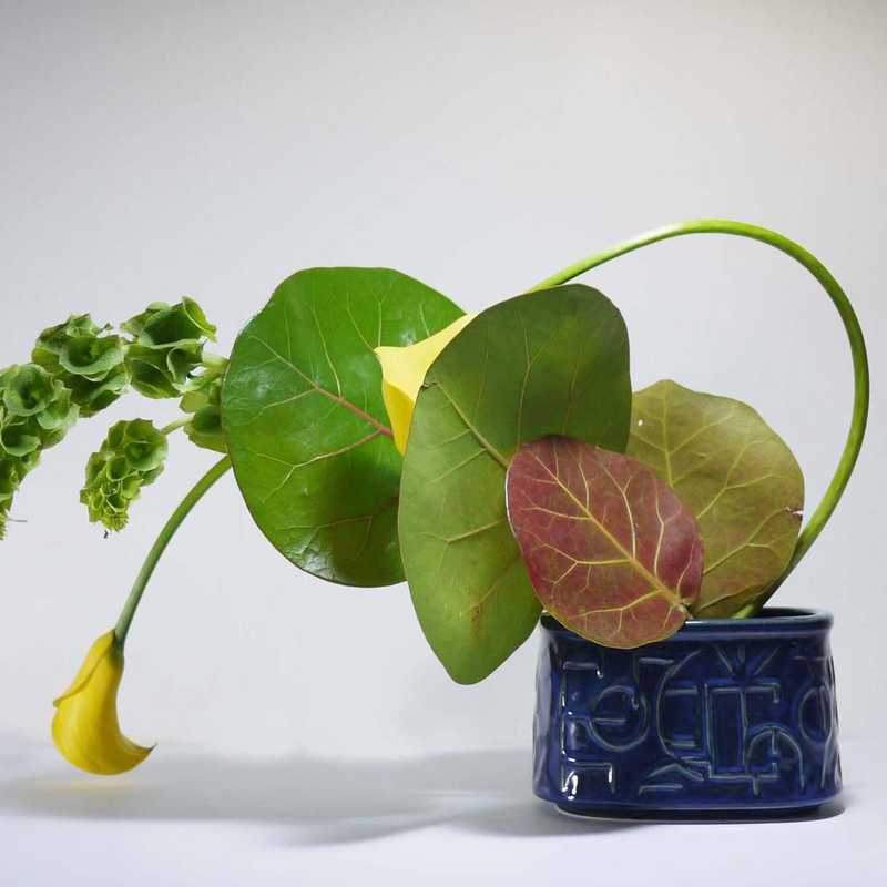 ❤️IKEBANA  TO ADMIRE ❤️2020❤️ | 1 day trip itinerary, map & gallery