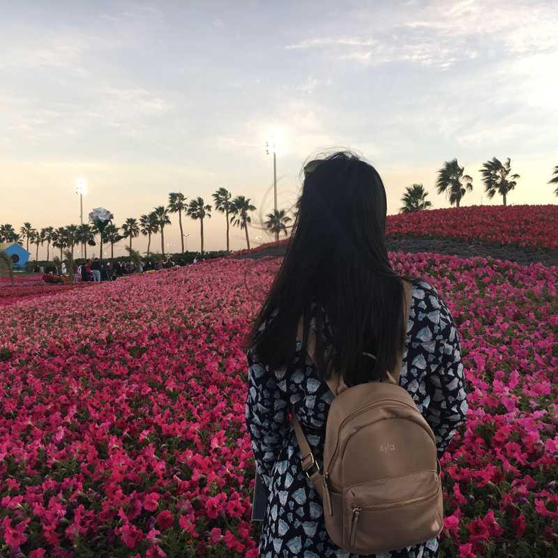 Yanbu Flower Festival Park