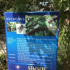 Sim Garden | POPULAR Trips, Photos, Ratings & Practical Information