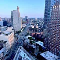 The Brooklyn Grove