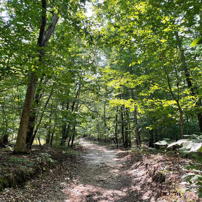 Trip Blog Post by @PrexTreks: Wildwood State Park, NY 2021 | 1 day in Sep (itinerary, map & gallery)