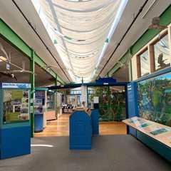 Morro Coast Audubon Society