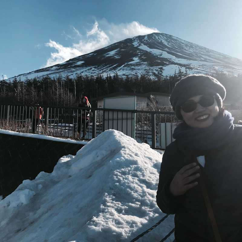 Mt.Fuji 5th Station (Sky Palace)