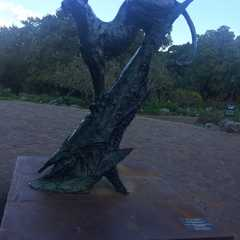 Kirstenbosch National Botanical Garden   Travel Photos, Ratings & Other Practical Information