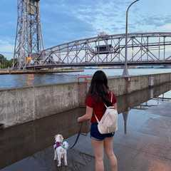 Aerial Lift Bridge - Real Photos by Real Travelers