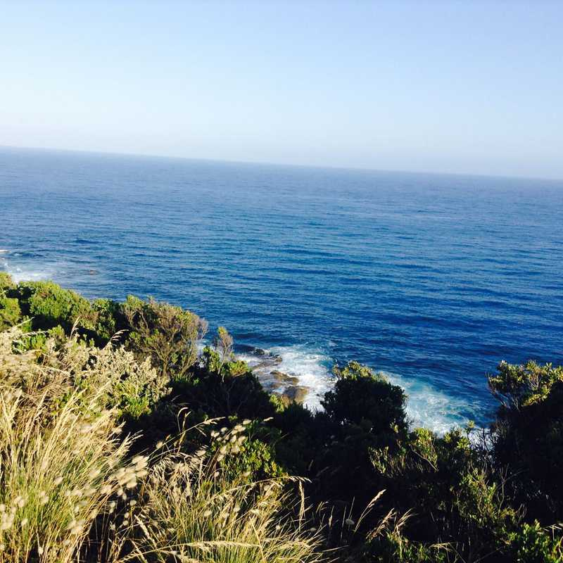 Cape Patton Lookout