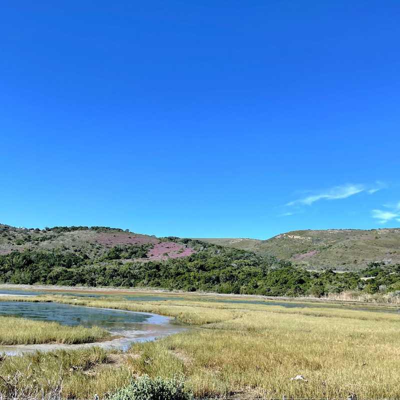 Steenbok Nature Reserve