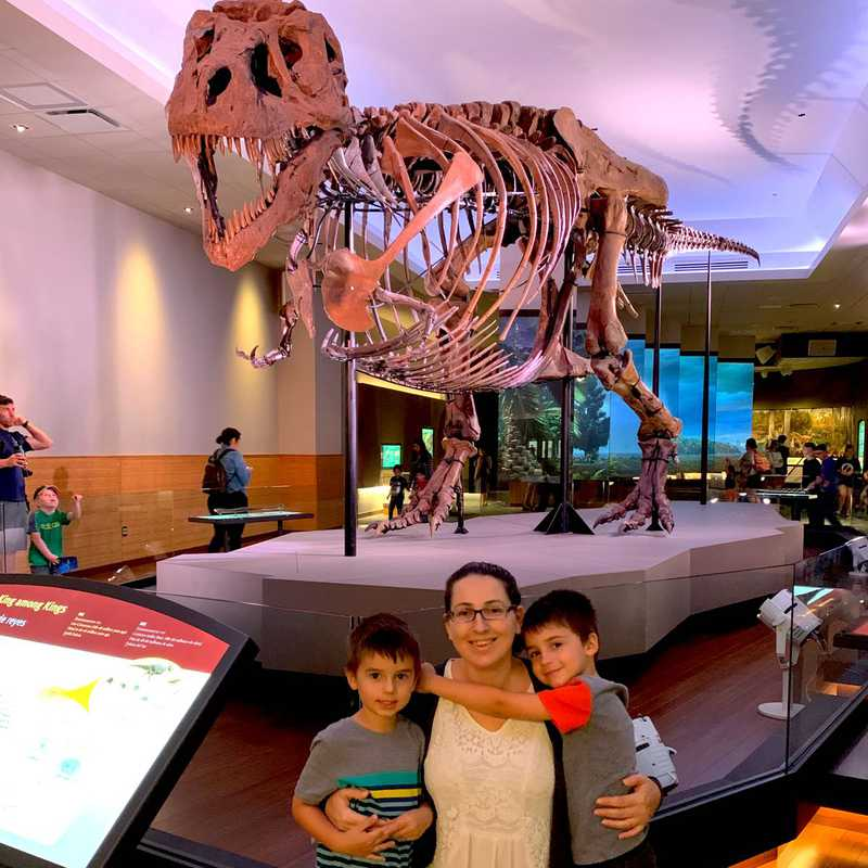 Place / Tourist Attraction: Field Museum (Chicago, United States)