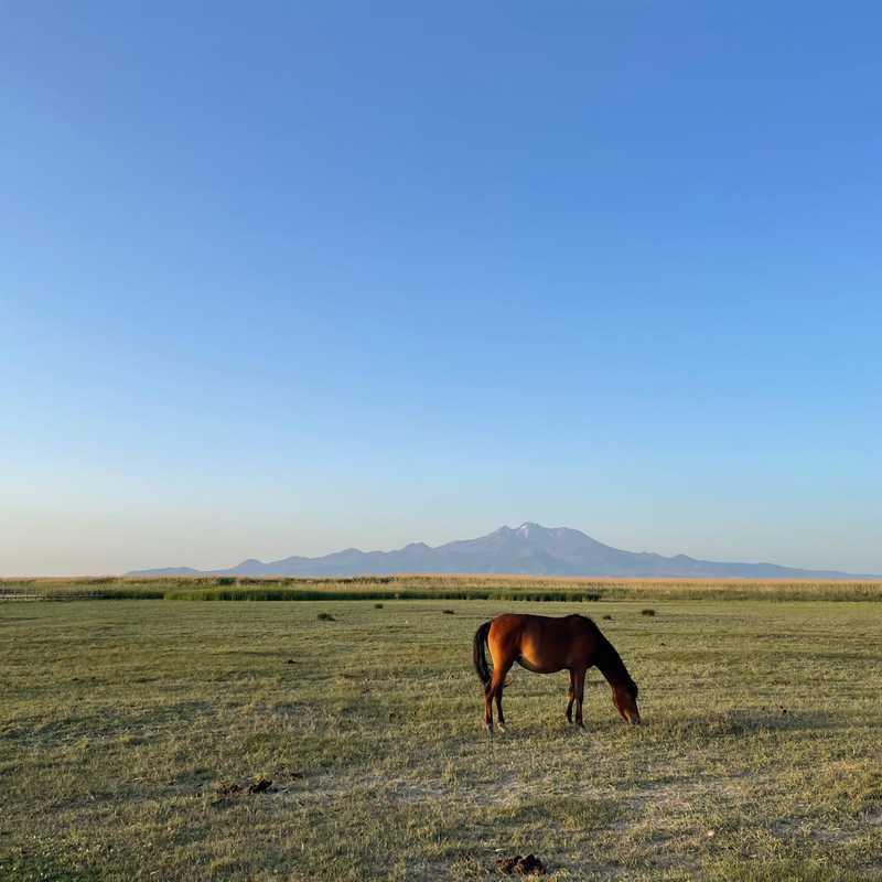Sultan Sazligi National Park