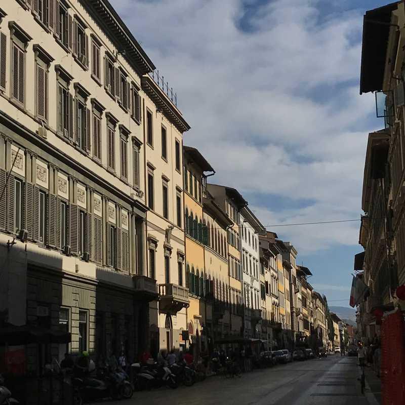 Drago Verde, Florence
