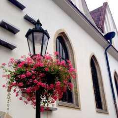 Prague 1 - Selected Hoptale Trips