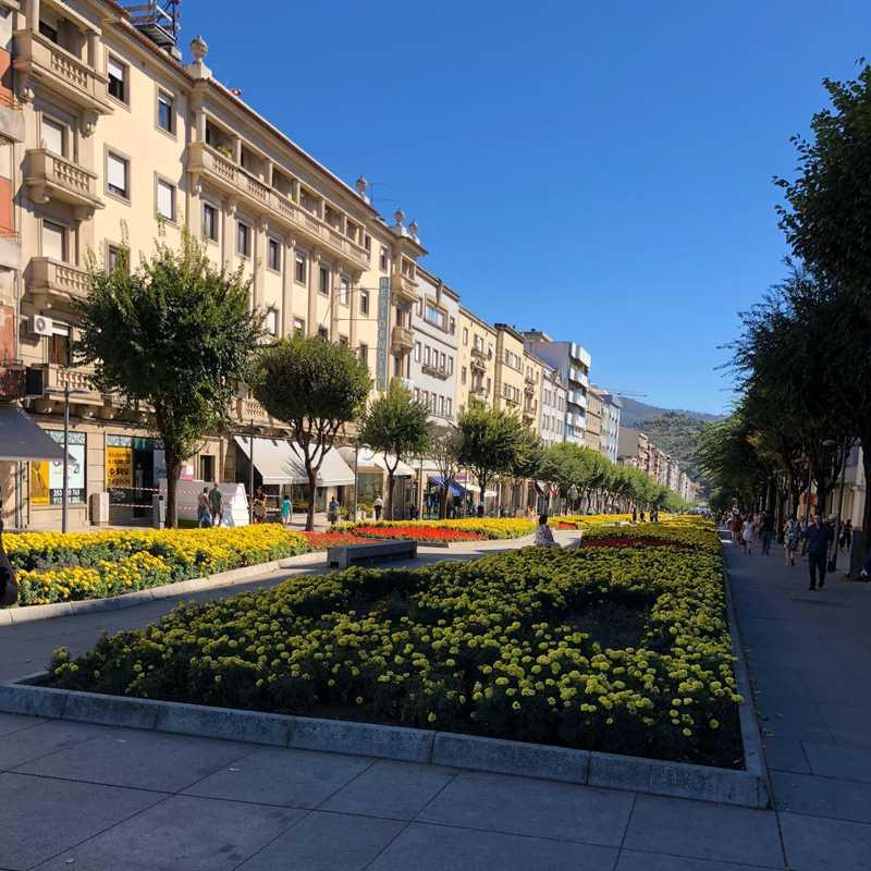 Park Avenida Central