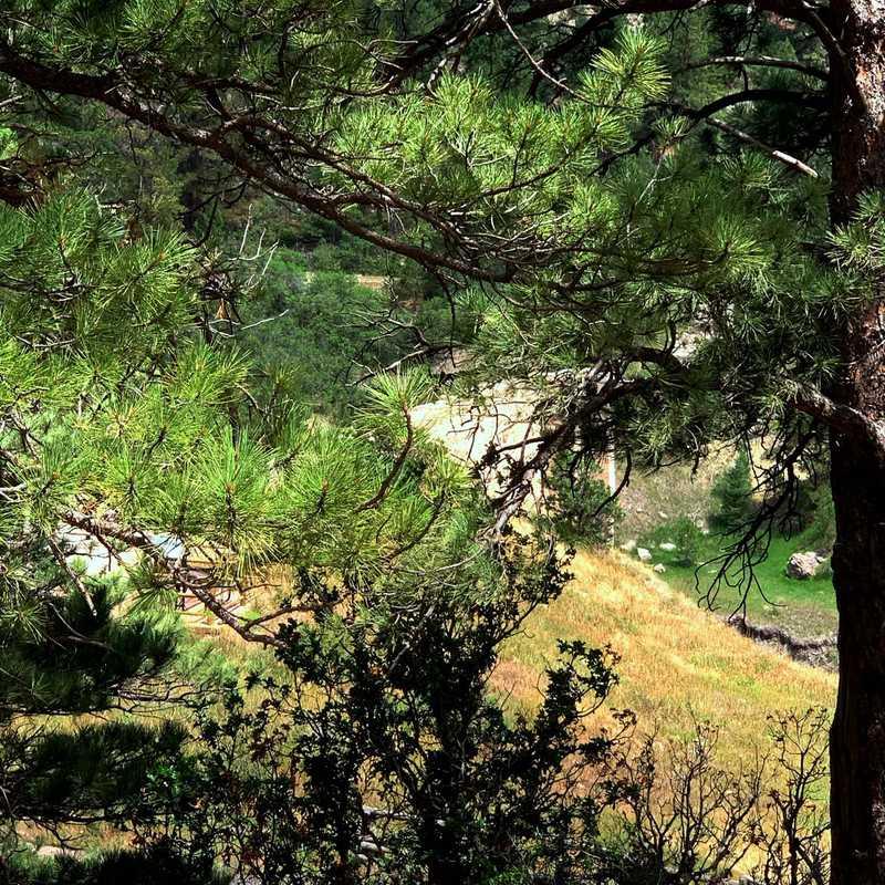 Castlewood Canyon Historic Dam