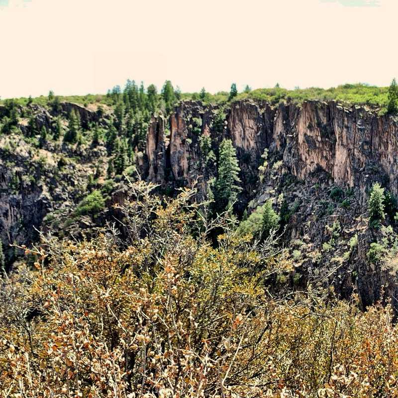 Cross Fissures View