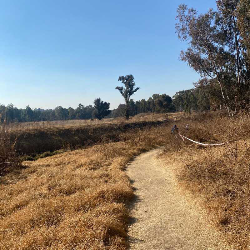 Trip Blog Post by @charleneeza: Modderfontein, South Africa Aug-2021 | 1 day in Aug (itinerary, map & gallery)