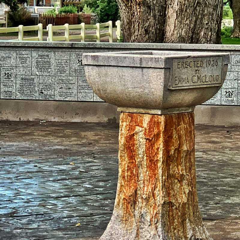 Paonia Park