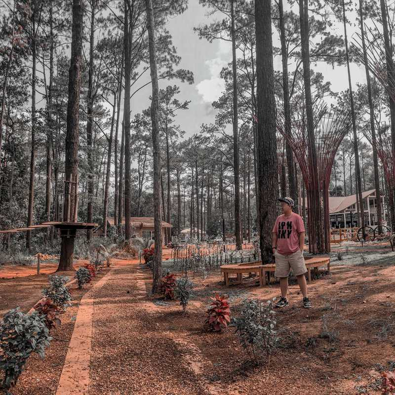 vKirirom Pine Resort