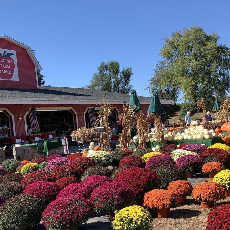 Virginia Farm Market LLC