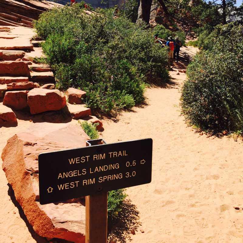 Angels Landing Trail
