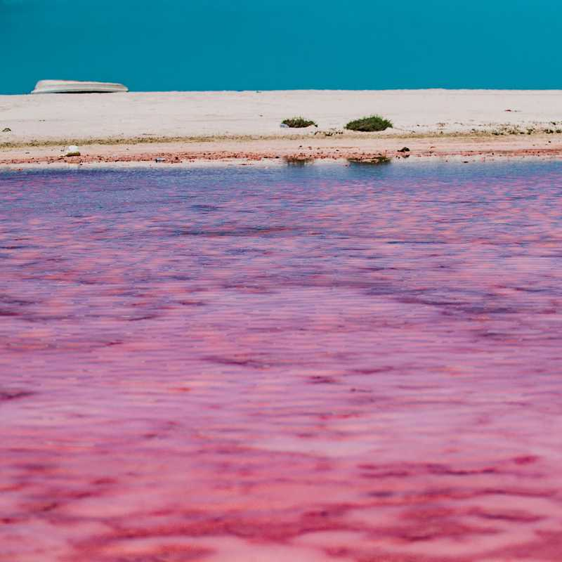Trip Blog Post by @RoyMrad: THE PINK LAGOONS 🇴🇲 | 1 day in Jun (itinerary, map & gallery)