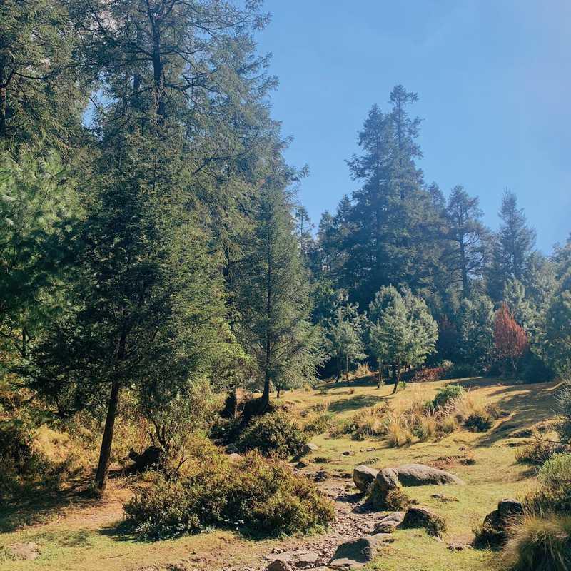 Llanos de Acopilco