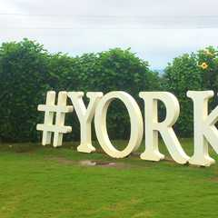 York Winery & Tasting Room