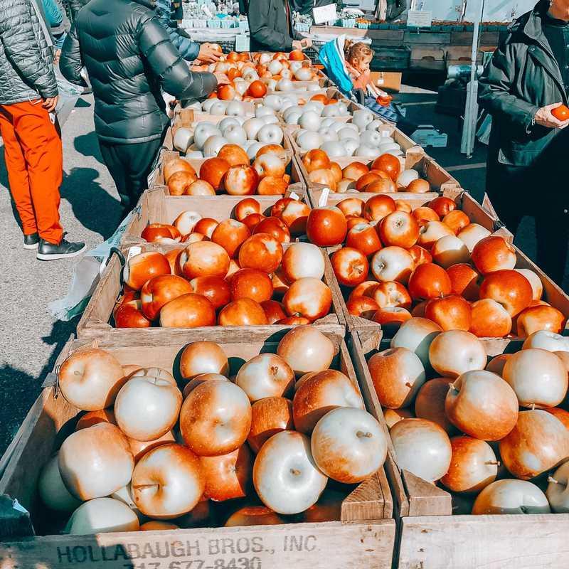 FRESHFARM Dupont Circle Market
