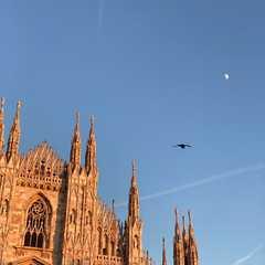 Milan - Selected Hoptale Photos