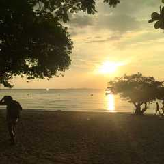 Ko Lan Island Beach - Photos by Real Travelers, Ratings, and Other Practical Information