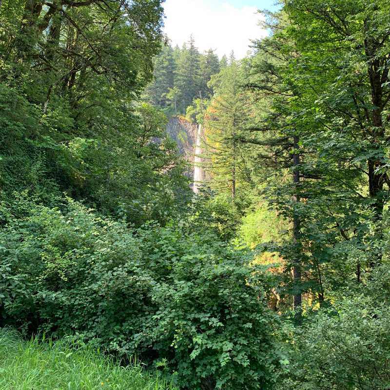 Latourell Falls Trailhead
