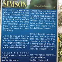Sim Sơn Phú Quốc - Photos by Real Travelers, Ratings, and Other Practical Information