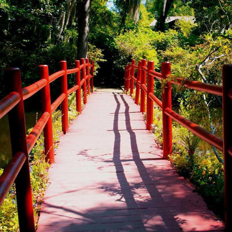 Visit Magnolia Plantation